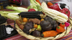 Die Landwirtschaft - Perus neue Wachstumslokomotive?