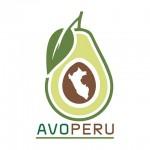 Avo Perú S. A.- Avocados