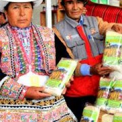 Nachhaltige Entwicklung im ländlichen Bereich Perus