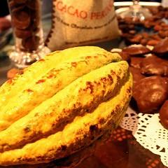 Biohändler Berrifine bestellt 25 Tonnen Kakao aus Peru nach Hamburg