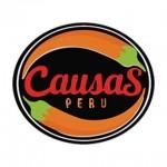 Causas Perú