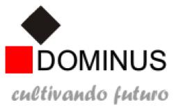 Dominus S.A.C.