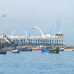 Peruanischer Fischexporteur wächst zweistellig