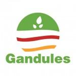 Gandules Inc.