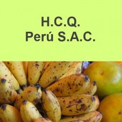 H.C.Q. Peru S.A.C.