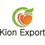Kion Export