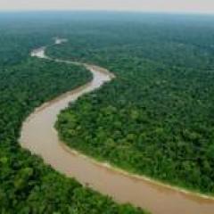 Zoologische Gesellschaft Frankfurt betreut weiteres Urwaldgebiet in Peru