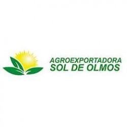 Agroexportadora Sol de Olmos SAC